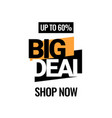 big deal discount with price is 60 vector image