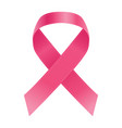 breast cancer awareness pink ribbon isolated on a vector image