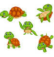 cartoon turtle collection set vector image