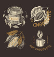 cocoa beans and chocolate fruit and bag vintage vector image vector image