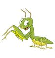 cute cartoon mantis vector image vector image