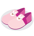 cute slippers vector image