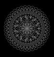 floral mandala on black background vector image vector image