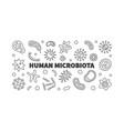 human microbiota outline horizontal vector image vector image