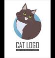 siberian cat flat design vector image vector image