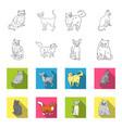sphinx nibelungnorwegian forest cat and other vector image vector image