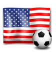 The flag of America with a soccer ball vector image vector image