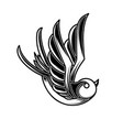 vintage swallow in engraving style design element vector image