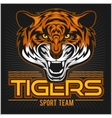 angry tiger face sport emblem vector image vector image