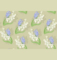 blooming spring flowers white and blue hyacinths vector image vector image