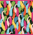 multicolored feathers on a black background vector image vector image