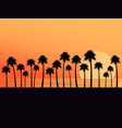 palm trees on a sunset background tropical vector image vector image