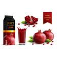 pomegranate realistic set vector image
