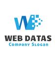 Web Datas Design vector image vector image