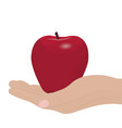 a red apple in a hand vector image