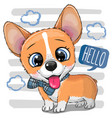 cartoon dog corgi with a bowtie vector image vector image