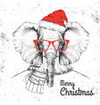 christmas hipster fashion animal elephant vector image