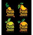 fresh juice vector image vector image