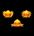 level up icon game golden icons graphical user vector image vector image