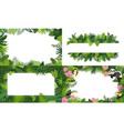 rainforest banner set cartoon style vector image vector image