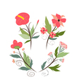 set of botanical graphic elements vector image vector image