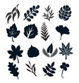 Black Leaf Symbols vector image