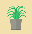 Plant in pot flat icon vector image