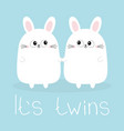 its twins two girls cute twin bunny rabbit set vector image vector image