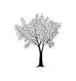 tree with leaves drawn sketch summer nature sign vector image vector image