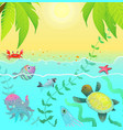underwater life sea creatures tropical paradise vector image vector image
