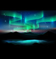 aurora sky and a lot of stars on lake background vector image vector image