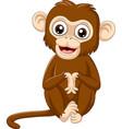 cute bamonkey sitting on white background vector image vector image