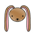 cute rabbit tender character vector image vector image