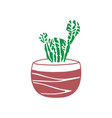 hand drawn cactus cute vector image