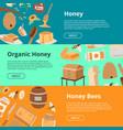 honey set of banners cartoon honeycomb bee pod vector image