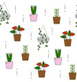 house plant pattern seamless vector image vector image