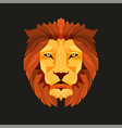 lion head low poly design creative logo elements vector image