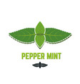 mint leaf icon peppermint leaves vector image vector image