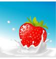 splash milk with big strawberry- with blu vector image