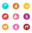 anthropoid icons set flat style vector image