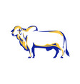 brahman bull side view retro vector image vector image