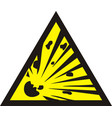 danger of the explosion - warning sign vector image vector image
