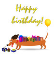 happy birthday greeting card with dachshund vector image