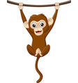 cartoon bamonkey hanging on a wood branch vector image vector image