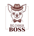 chihuahua boss dog t-shirt print design cool vector image