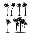 palm trees silhouette coconut palm set vector image