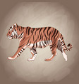 tiger drawing over brown background vector image vector image