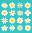 white daisy chamomile icon camomile super big set vector image vector image