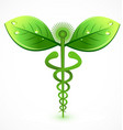 caduceus organic green medical icon vector image