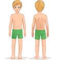 child boy in shorts anatomy